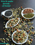 How to make sprouts at home V1